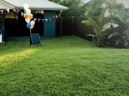 Freshly Layed Empire Zoysia Lawn in Backyard