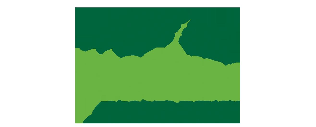 stadium sports couch logo