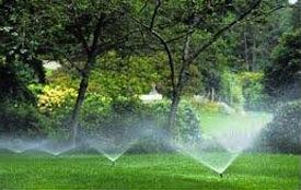 Lawn Reticulation