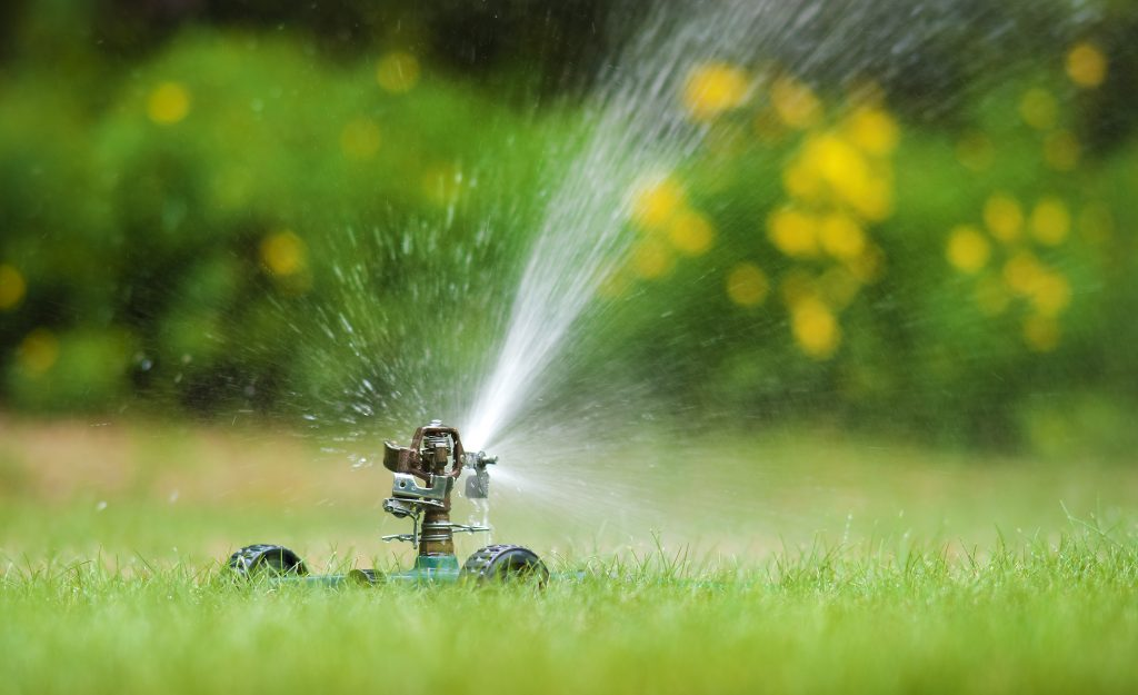Lawn Watering & Herbicide Treatments