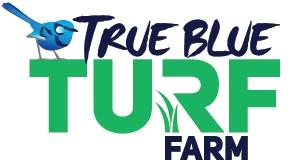 https://www.myhometurf.com.au/wp-content/uploads/2019/05/True-Blue-myhomeTURF-logo.jpg