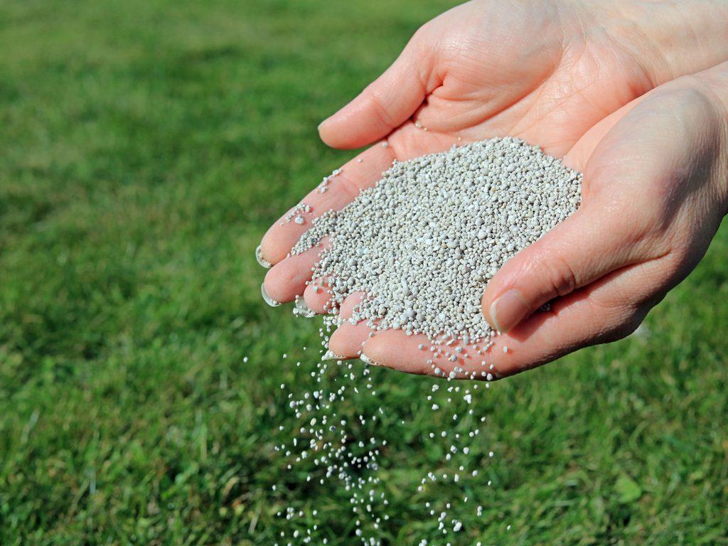 Fertilizer Being Applied to Lawn