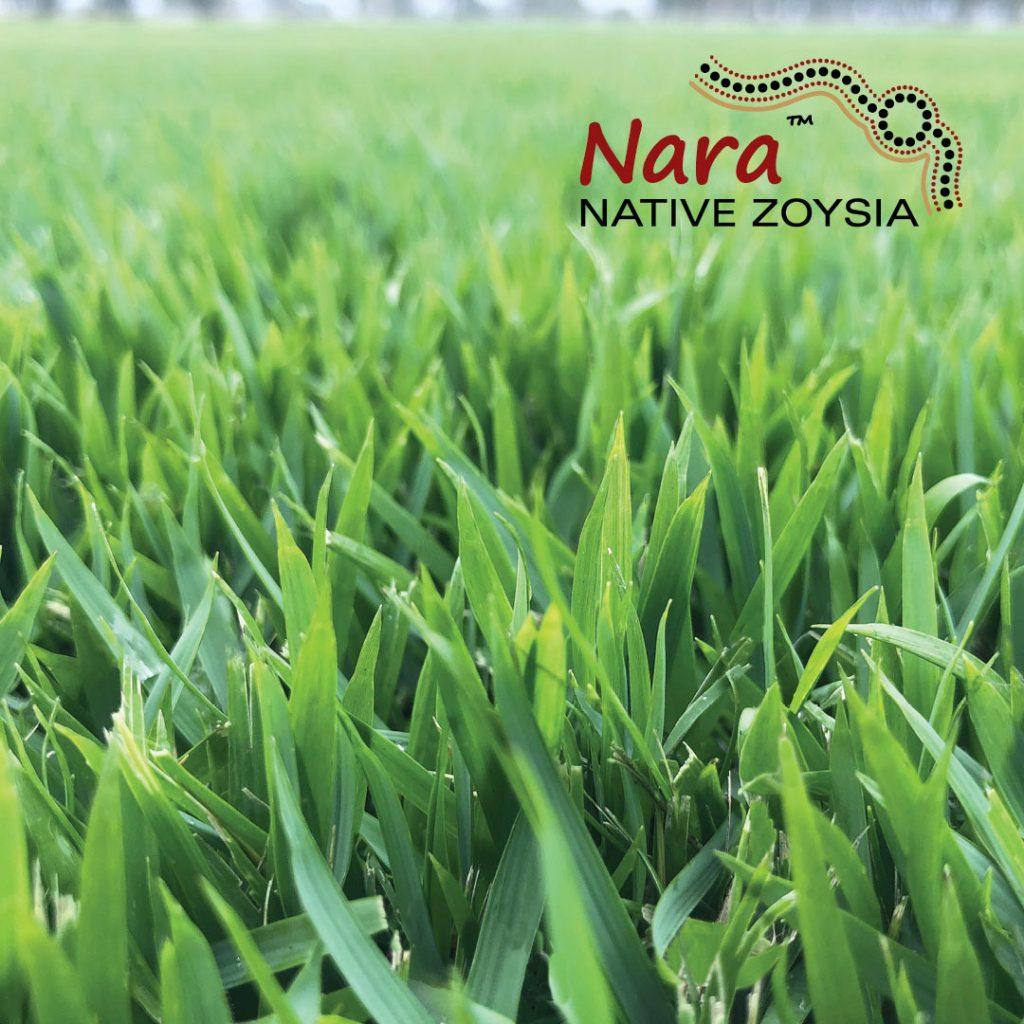 nara zoysia lawn branded logo