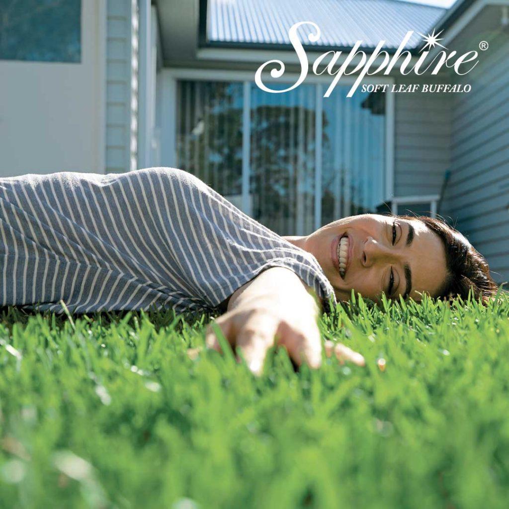 Sapphire Soft Leaf Buffalo Turf - Perfect for Adelaide Climate