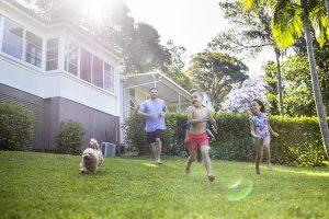 myhomeTURF my lawn my lifestyle